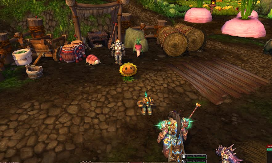 farmer-nishi-wow-pet-battle