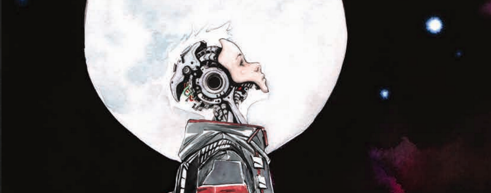 Image did one of their own expos back in the summer of 2014. Most of their books didn't really capture my attention, except for one little book by the name of Descender. Not because of the premise (though it does remind me a tad of Astro Boy), but because of the creative team involved: Jeff Lemire as the writer and Dustin Nguyen as the artist. I was instantly sold on this alone, and now that the comic has arrived, I can finally read it and see what it is all about. Is it good?
