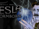 tesla-stormborn-1-featured