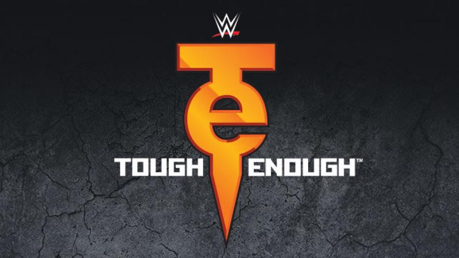 The Tough Enough Curse: An analysis of the show's winners and losers