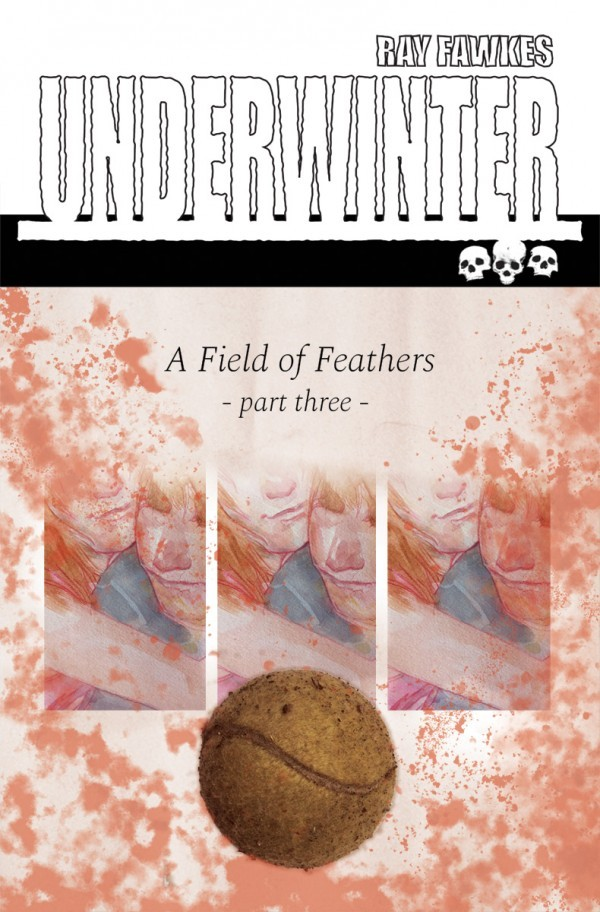 Underwinter: A Field of Feathers #3 Review