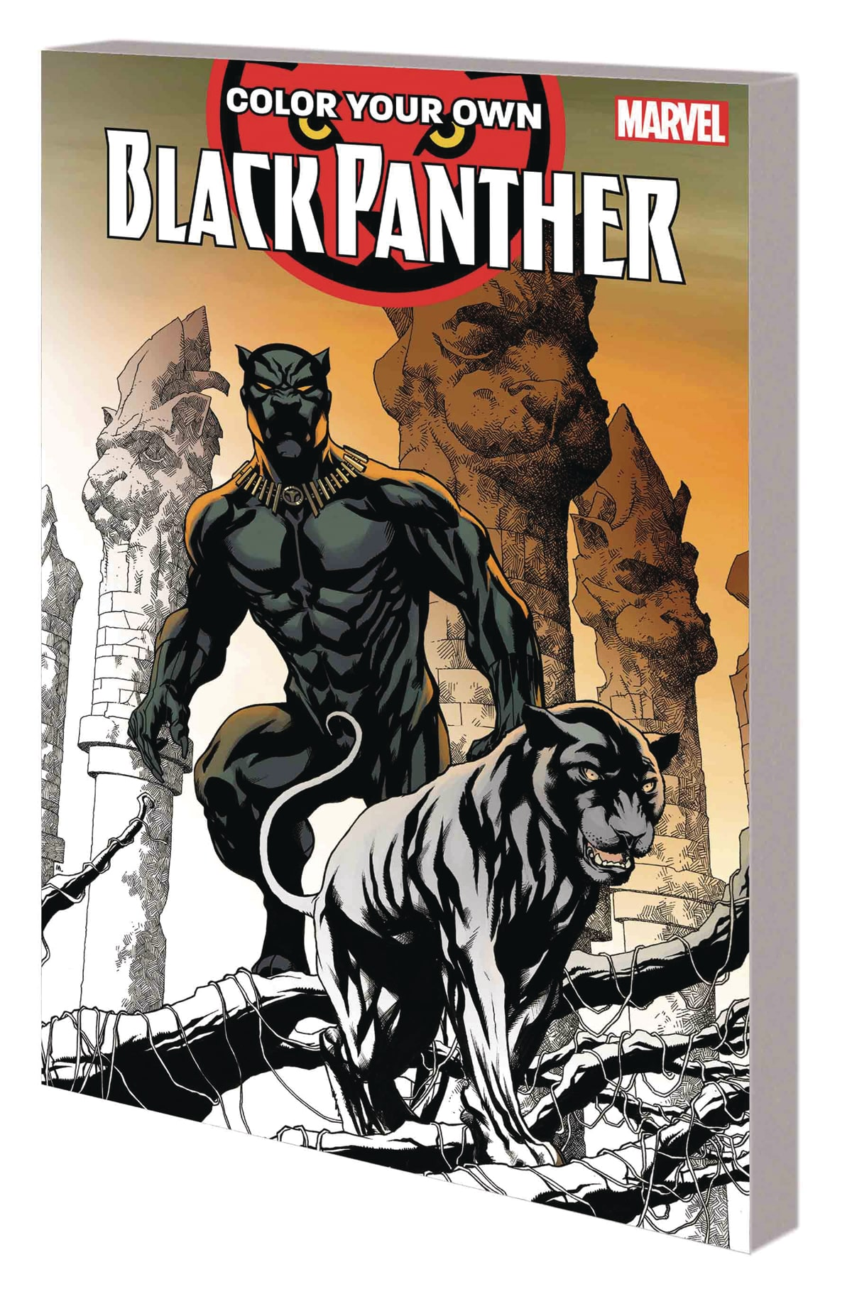 Color Your Own Black Panther review