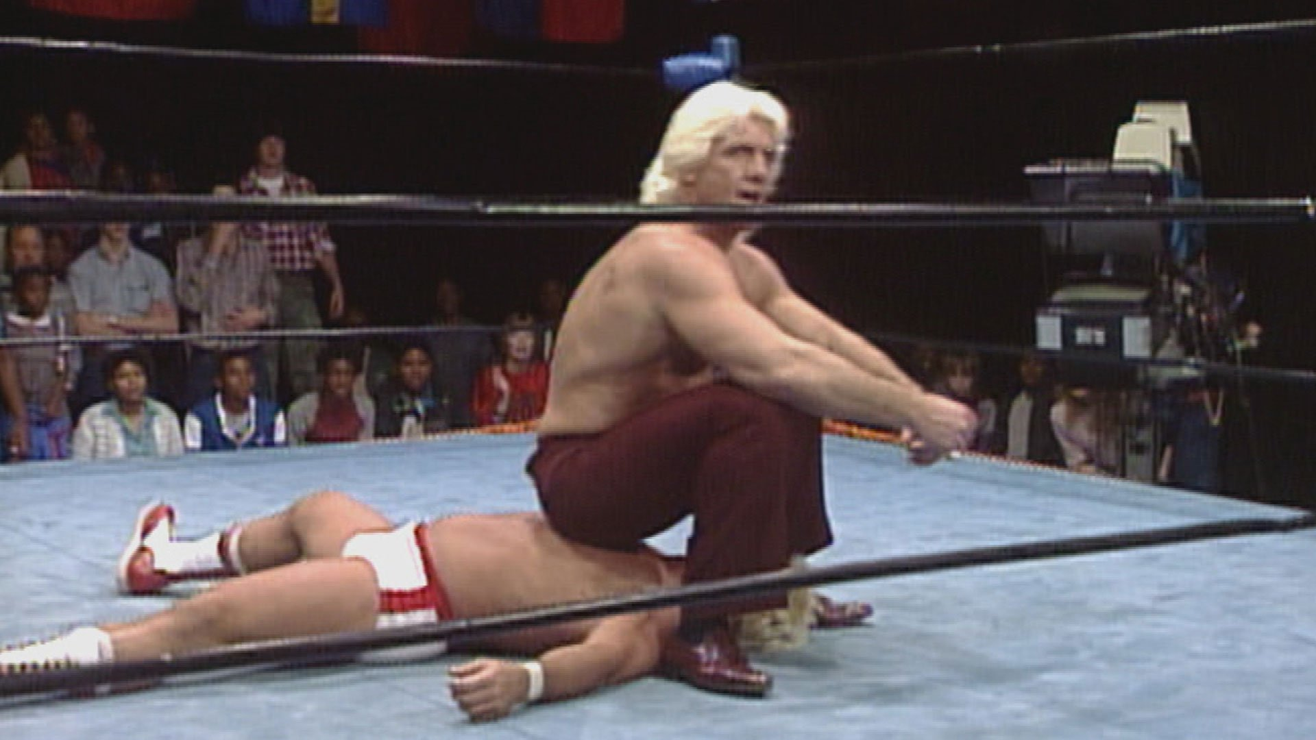 Ric Flair was ready to enter the sex tape industry in the late 1980s.