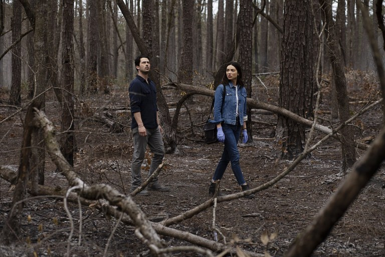 """Yes, this appears to be the show's take on the comics' """"tuber stories,"""" in which Abby would ingest a vegetable grown from Swamp Thing's body and the two would experience a kind of hallucinogenic version of lovemaking. The television series obviously takes a much different route here, but there's a real sweetness to the whole thing."""