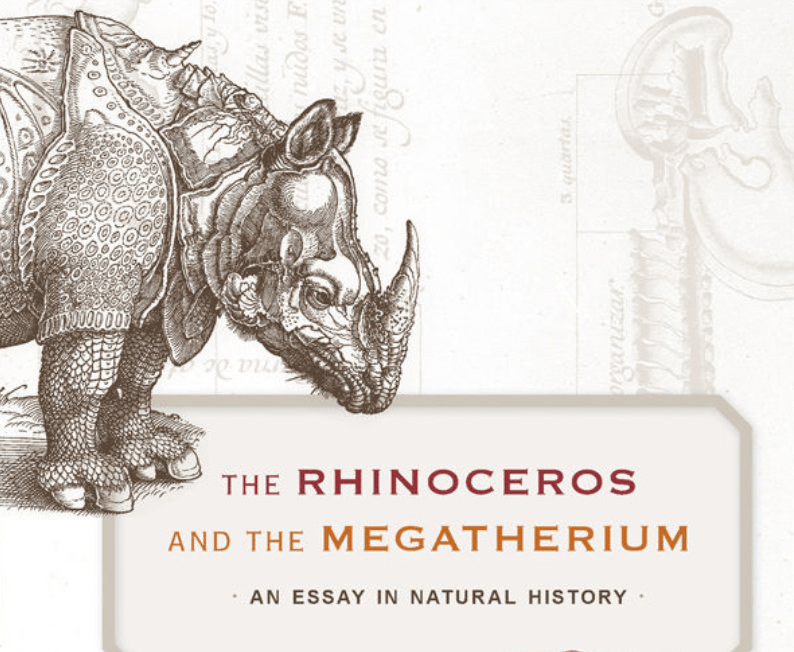 'The Rhinoceros and the Megatherium: An Essay in Natural History' -- book review
