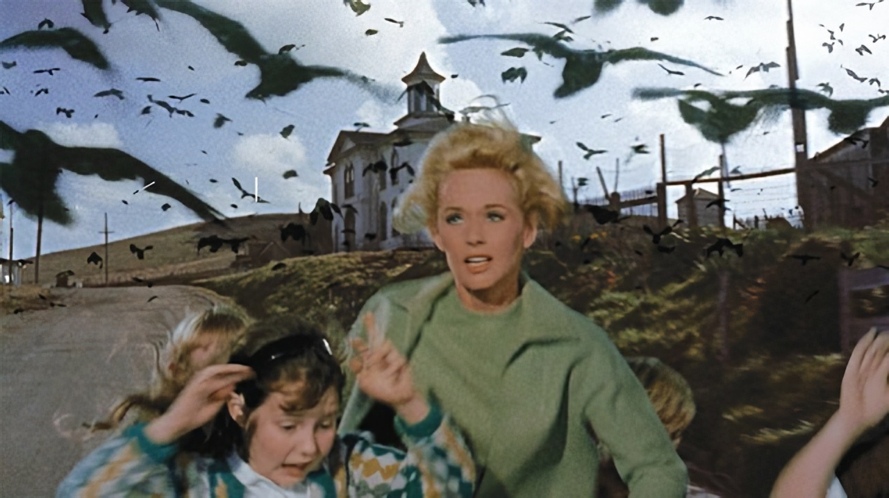 'The Birds' (1963) review: How does the Hitchcock classic hold up today?