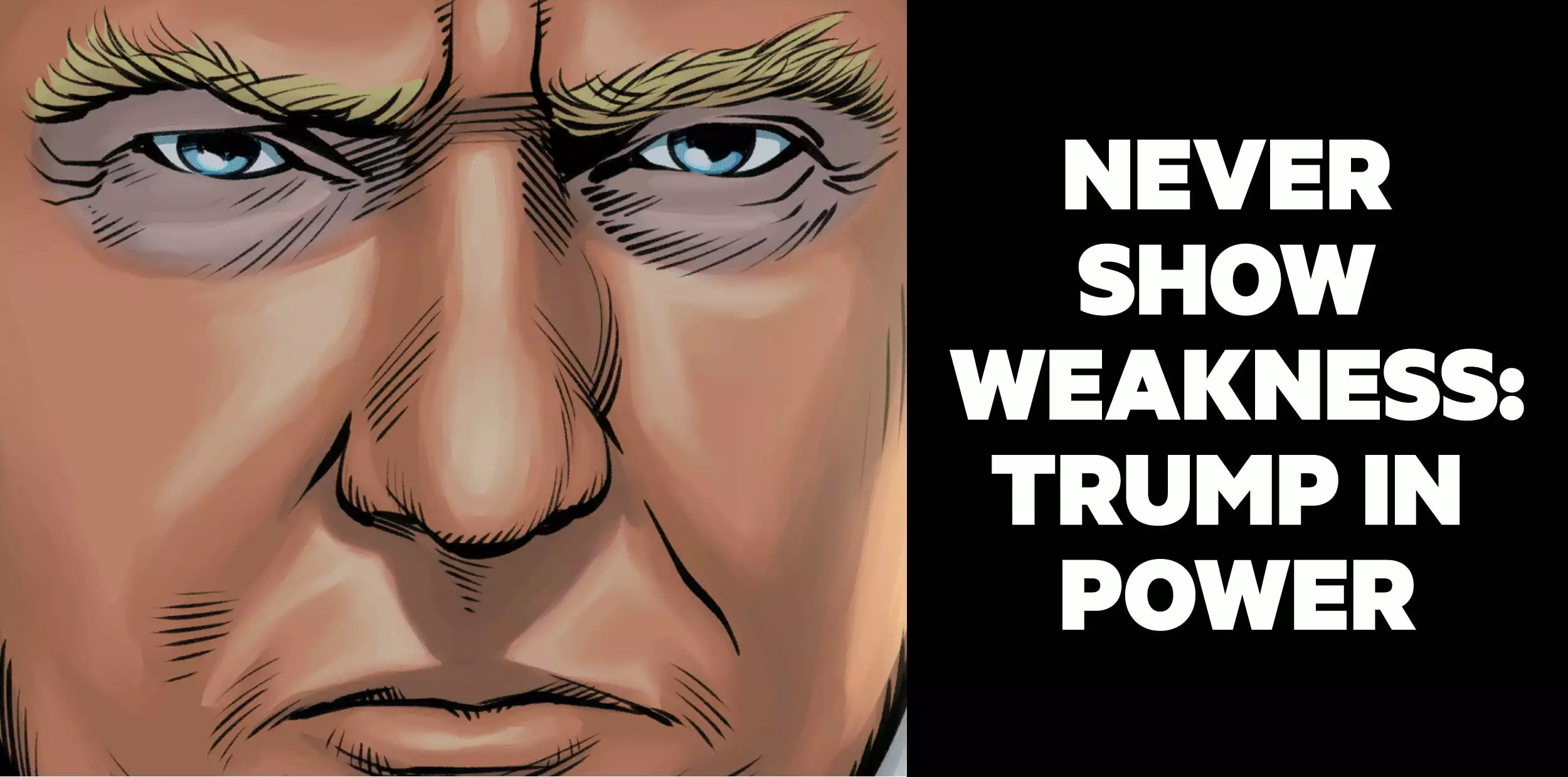 "Donald Trump the comic book: Anthony Del Col and Josh Adams transform 45 into ""digestible"" webcomic"