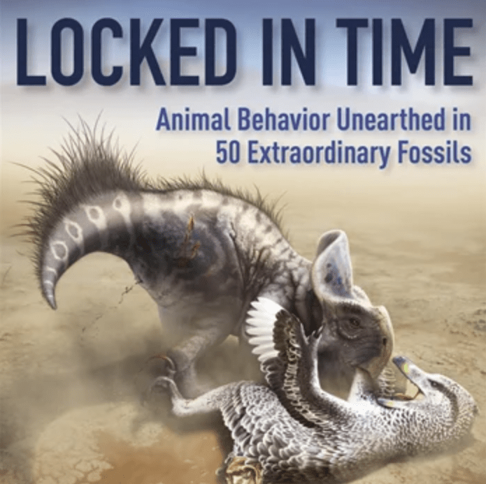 Dinosaurs and more clash in 'Locked in Time'