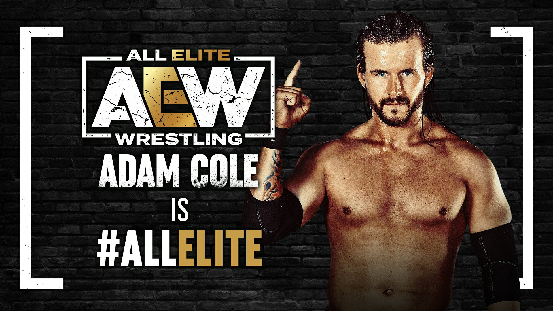 Adam Cole signs with All Elite Wrestling